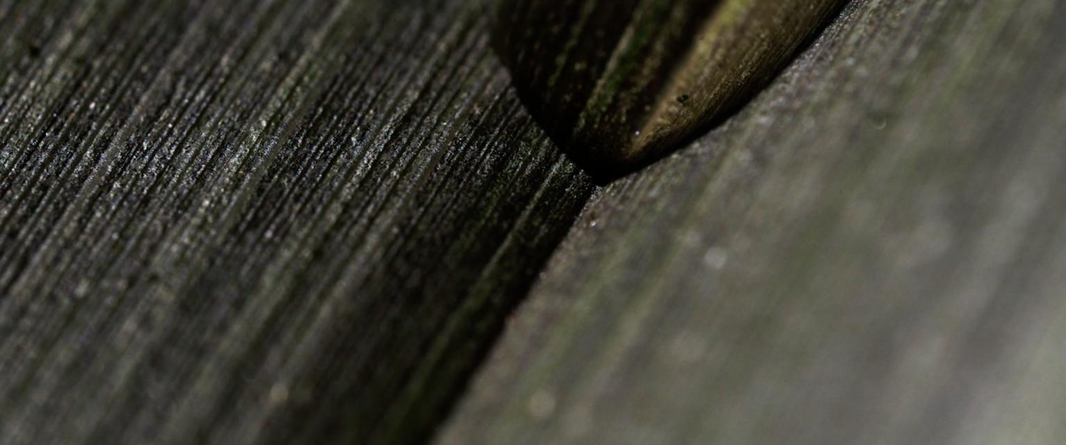 Mykonos Biennale 2015 - Film Festival -  Rain - screen shot