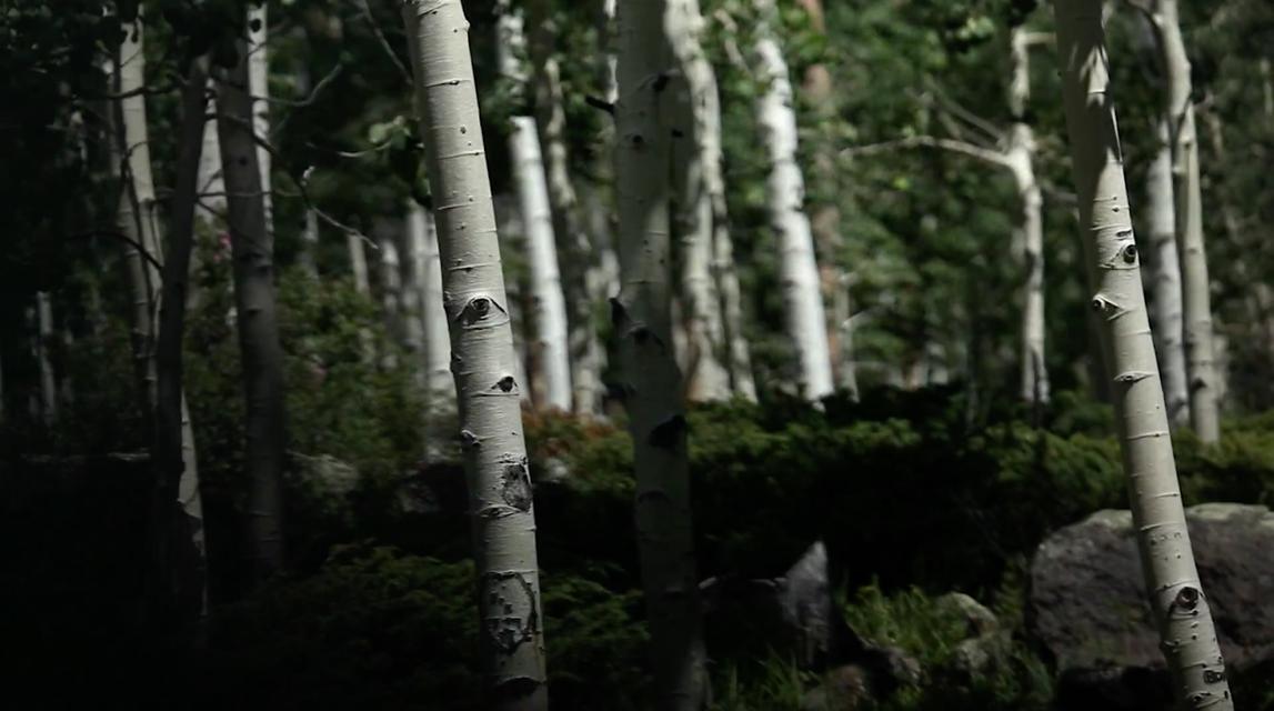 Mykonos Biennale 2015 - Film Festival -  The Trembling Giant - screen shot