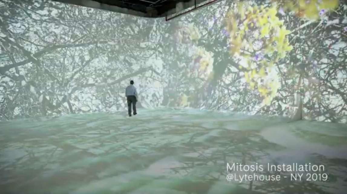 Mykonos Biennale 2015 - Film Festival -  MITOSIS - screen shot