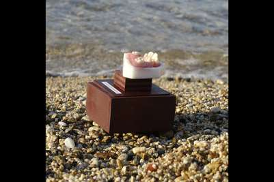 Mykonos Biennale  -  Antidote - The Teeth of Aphrodite - screen shot