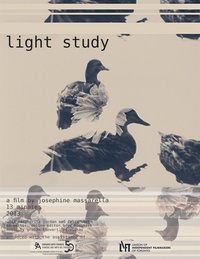 Light Study Poster