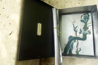Mykonos Biennale  -  Antidote Box - Sustain - screen shot