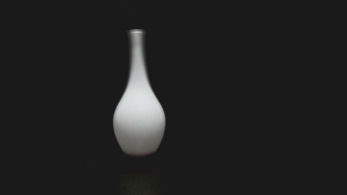 Mykonos Biennale 2015 - Film Festival -  vase - screen shot