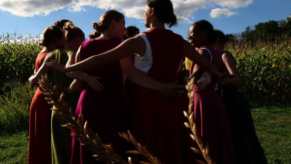 Mykonos Biennale 2015 - Film Festival -  Renzi Corn Circle - screen shot
