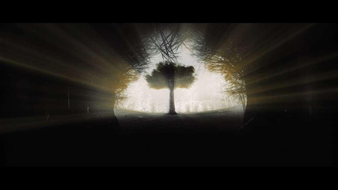 Mykonos Biennale 2015 - Film Festival -  The Tree of Numbers - screen shot