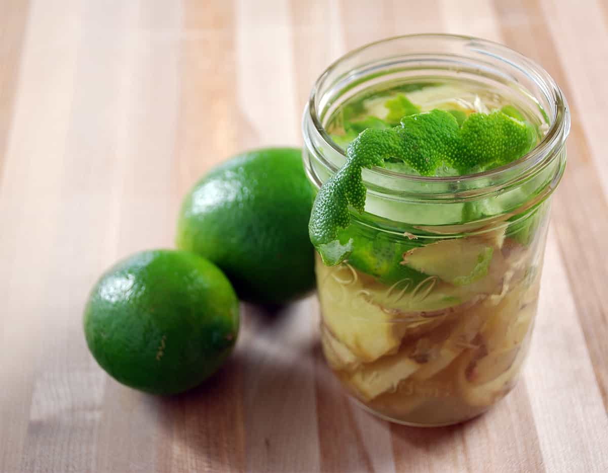 Moscow mule infused vodka recipe amazing food made easy forumfinder Gallery
