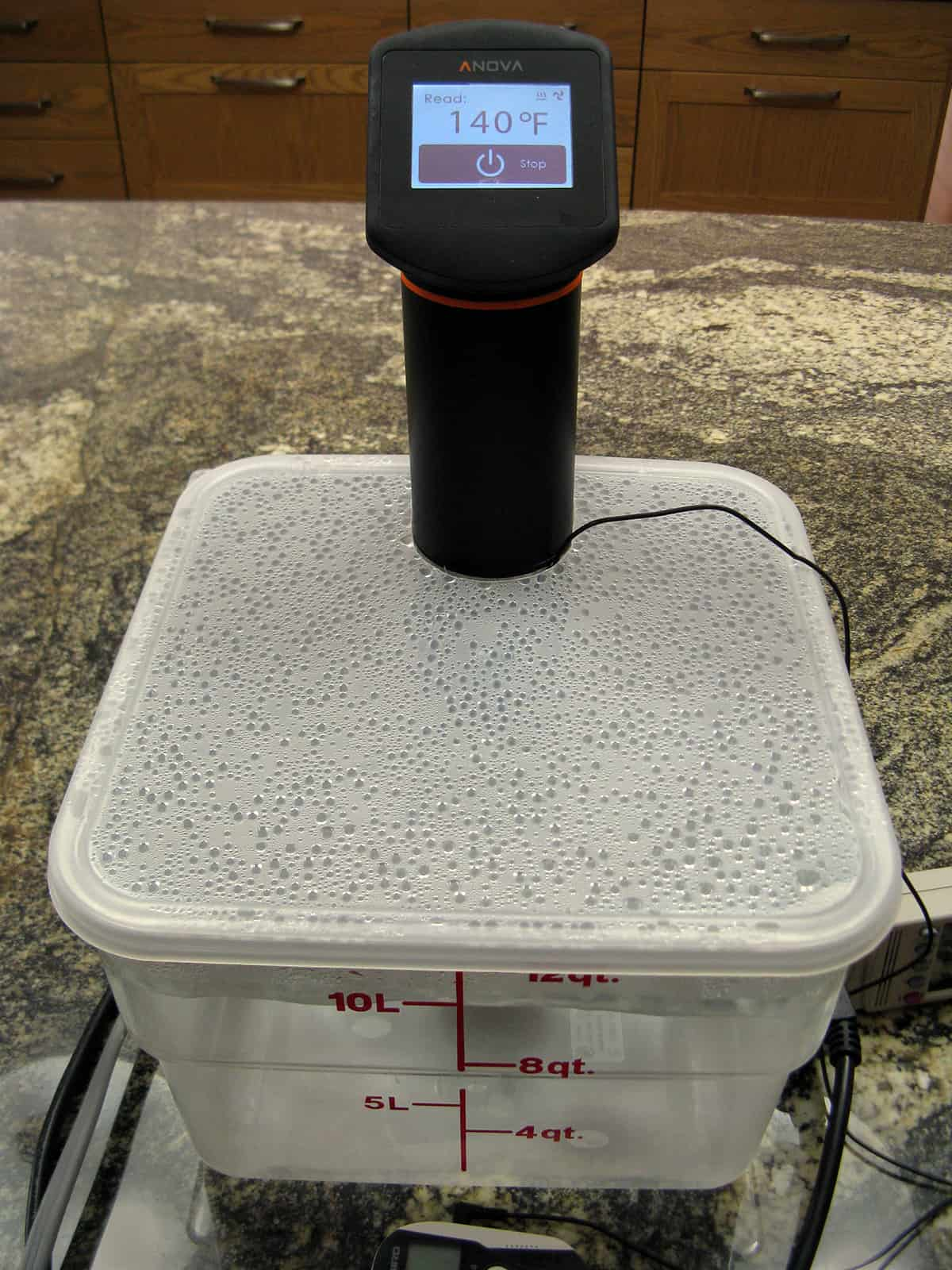 sous vide water bath container reviews amazing food made easy