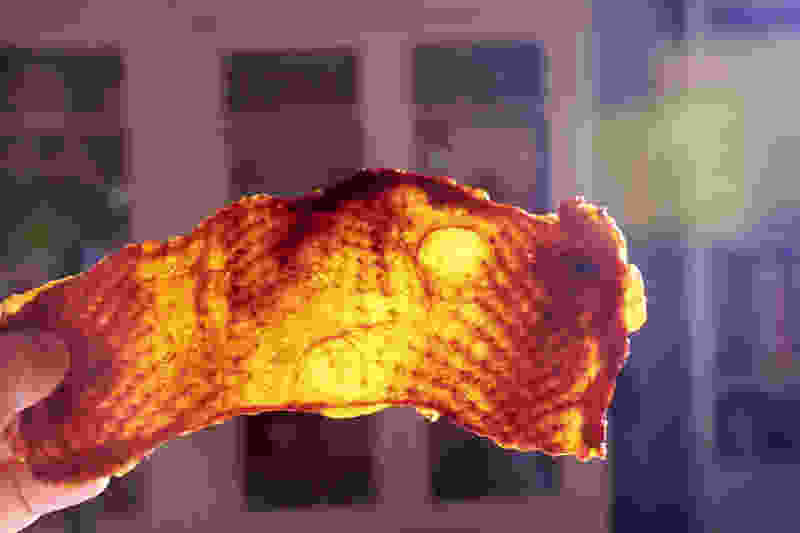 Crispy turkey skin 58