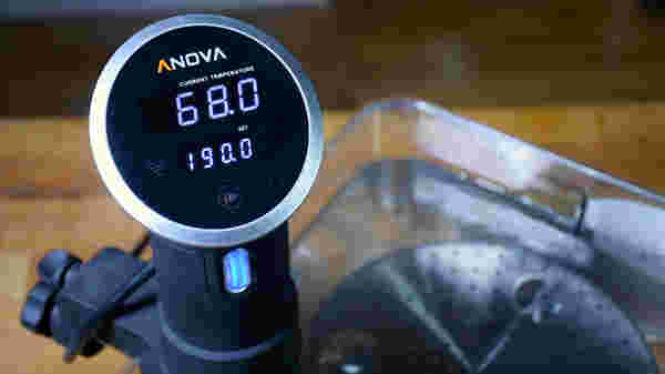 Sous vide circulator temperatures 12