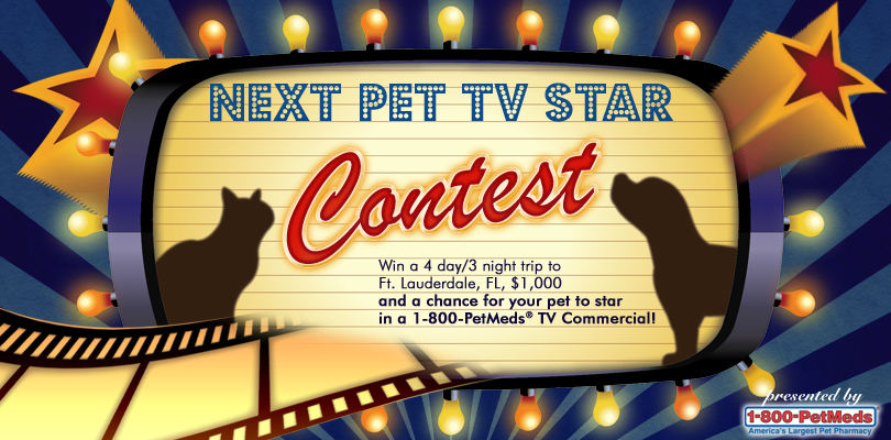 PetMeds Next Pet TV Star Contest