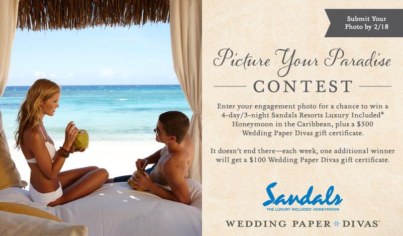 Picture Your Paradise Photo Contest