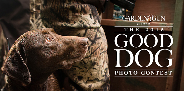 Enter the Garden & Gun Good Dog Photo Contest