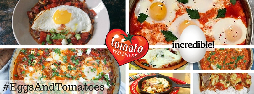 Favorite Eggs and Tomatoes Dishes!