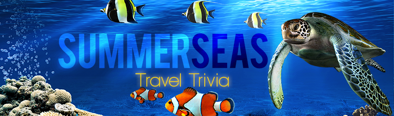LIVE's Summer Seas Travel Trivia Form