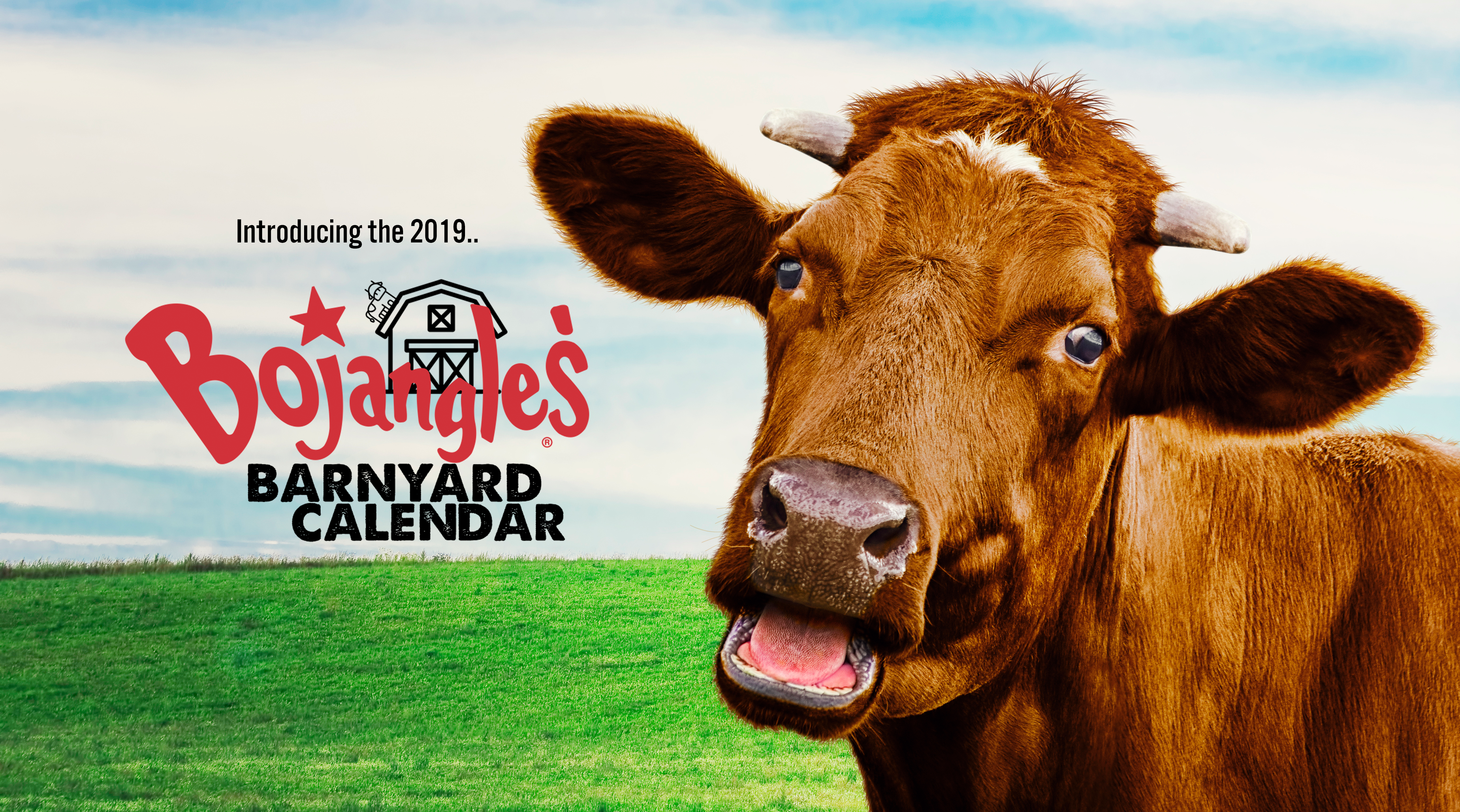 photo relating to Bojangles Printable Coupons referred to as Bojangles Barnyard Calendar