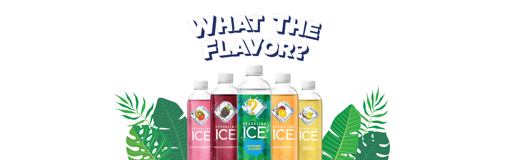 What The Flavor - Sparkling Ice
