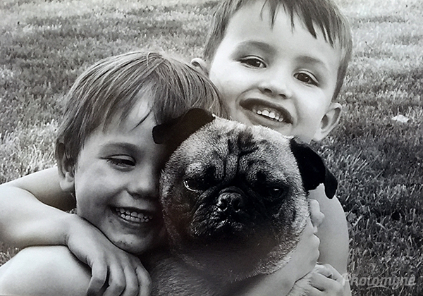 My two grandsons and our puppy. Ohio, USA 2004