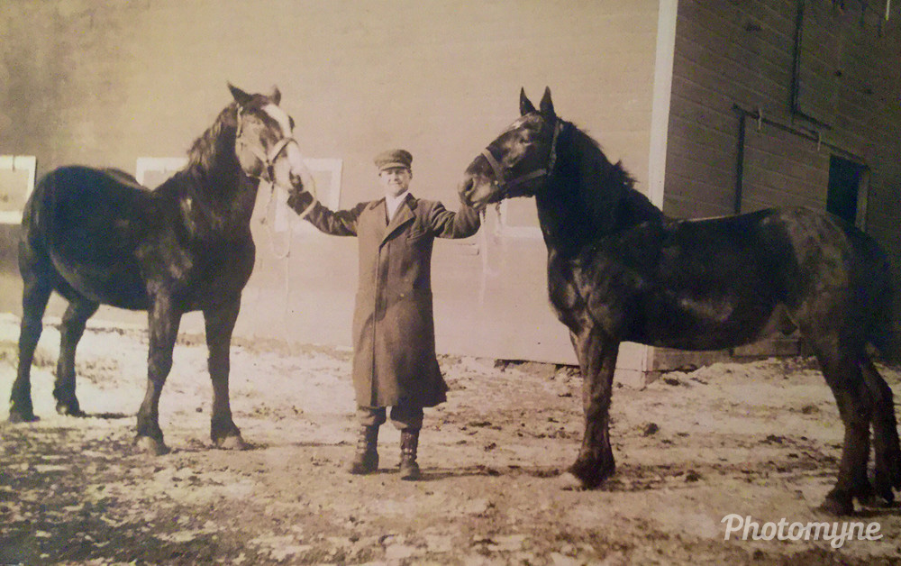 Grandpa with his wagon horses, Magnet, Nebraska, United States, 1927