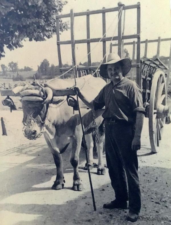 Départ aux foins (Departure to hay). France 1955