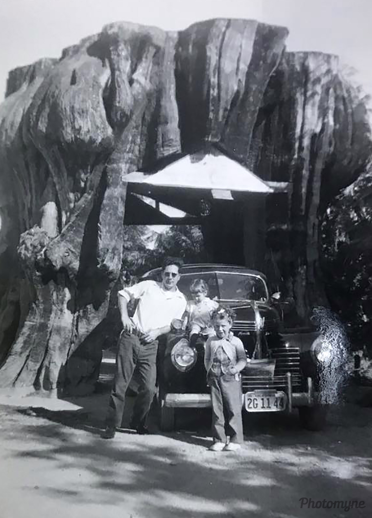 California's drive through redwood tree. I am the toddler sitting on the car with my sister standing and my dad to the left. USA 1948