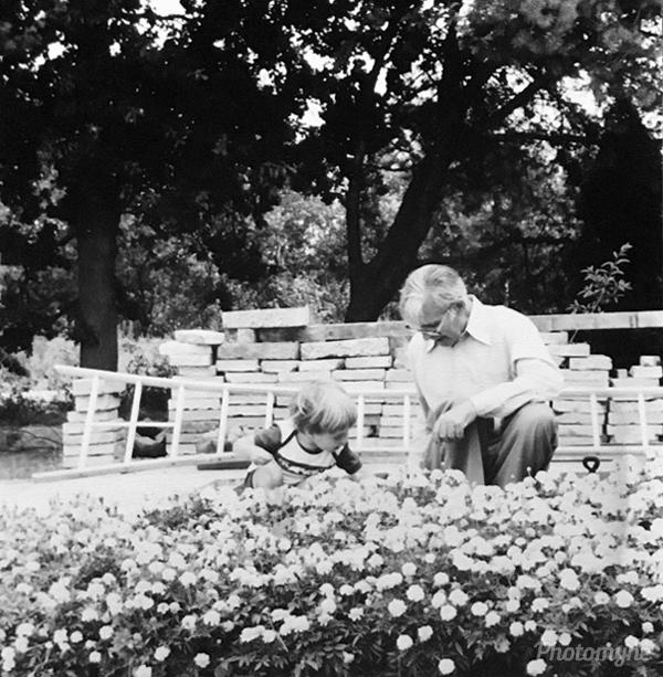 Zaadjes oogsten (harvesting seeds). Belgium 1981