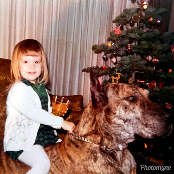 Maybe 3rd Christmas...riding our gentle giant, Count. USA 1973
