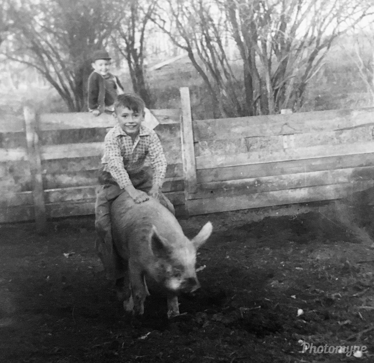 Pet pig riding. Alberta, Canada (year unknown)