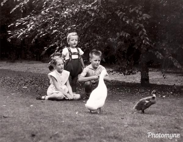 Jeroen met neef Kees en nicht (Jeroen with cousin Kees and niece). Netherlands 1955