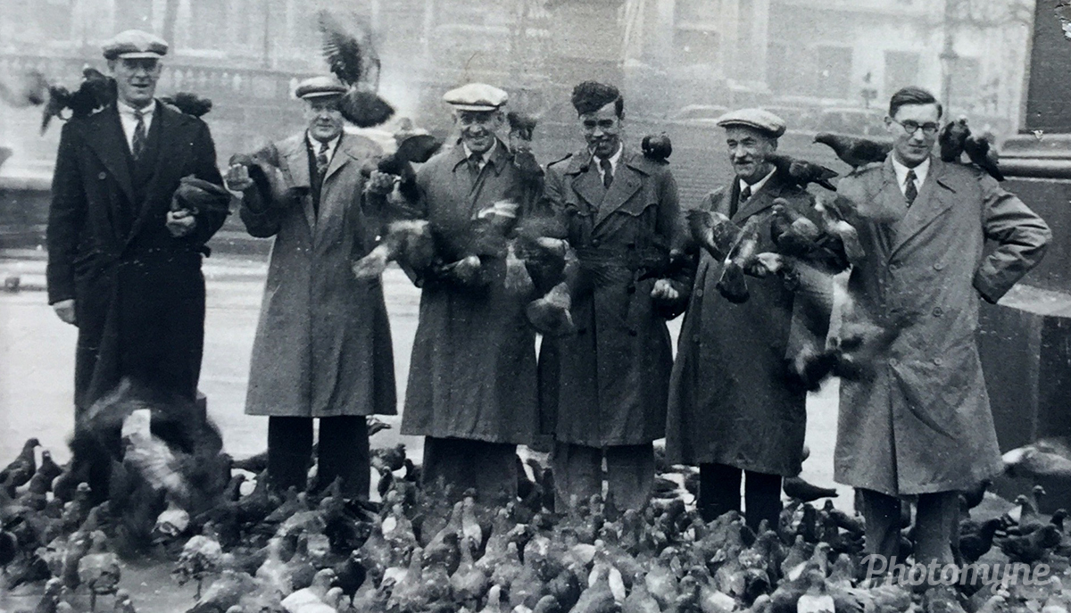 Bertie Soper and Ron Priddle with friends in London feeding the pidgeons. UK 1950