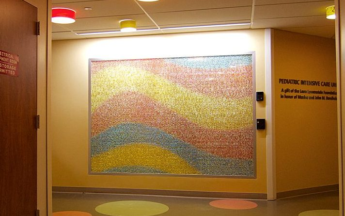 CCMC – North Shore LIJ Health System Artwork 0