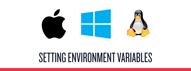 How To Set Environment Variables - Twilio