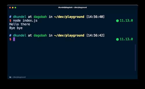 Screenshot of Terminal running `node index.js`