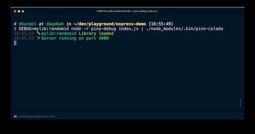 Screenshot of debug logs working with pino and pino-colada