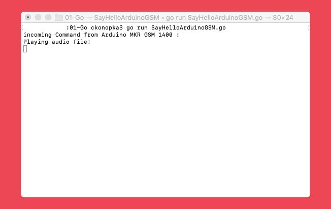 arduinogsm-server.png