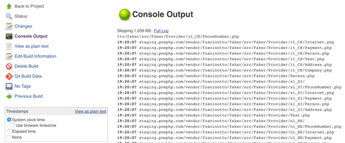 console_output