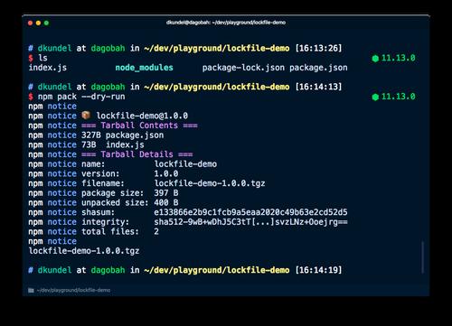 """screenshot of running """"npm pack --dry-run"""""""