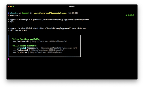 """screenshot of terminal showing that tsc was executed and the output of """"twilio-run start"""""""