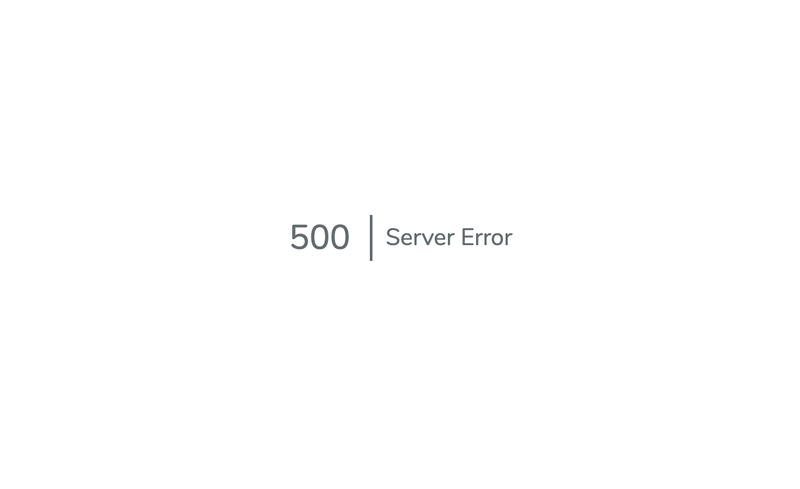 "Screenshot of a minimalist error page reading ""500 | Server Error"""