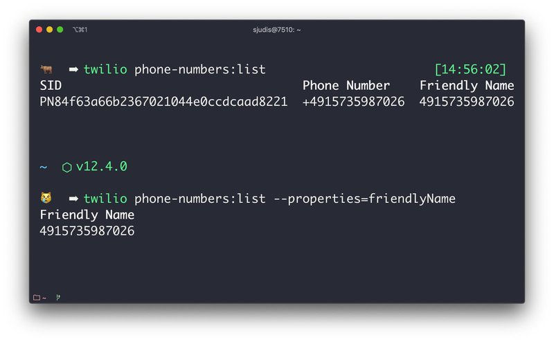 Reduced command output after ran command `twilio phone-numbers:list --properties=friendlyName` including a properties flag