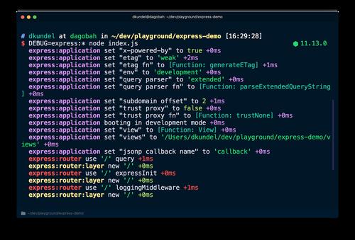 Screenshot of express debug logs
