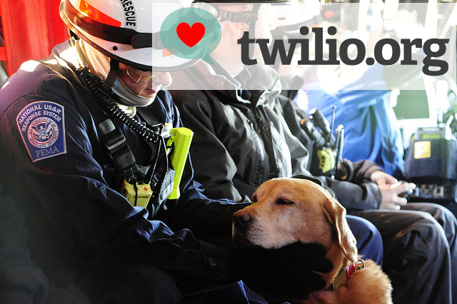 twilio_disaster_relief_dog