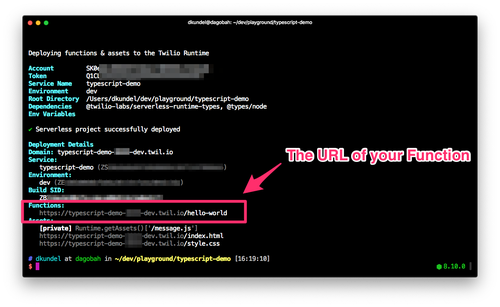 screenshot of terminal showing the deployment output and highlighting the functions URL