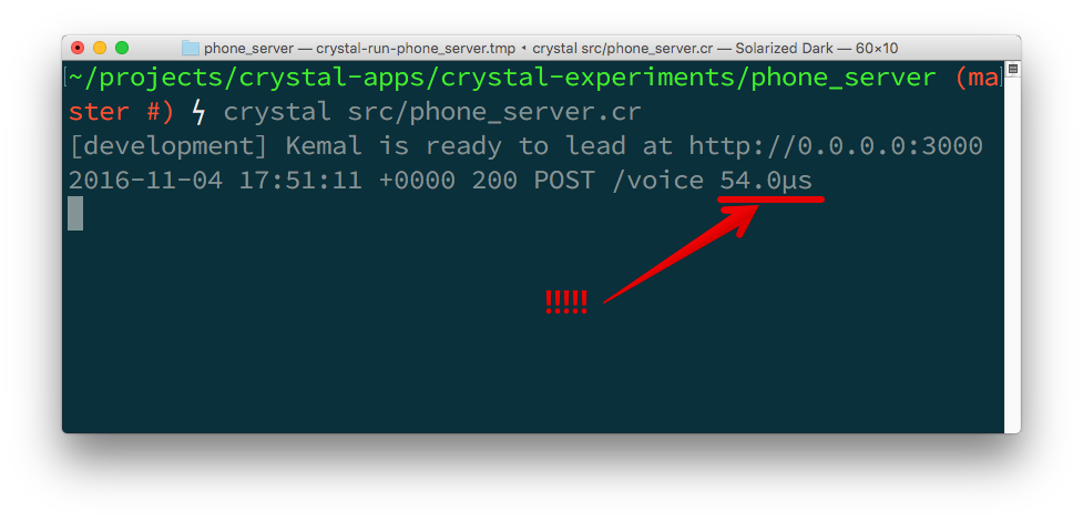 The server logs show that the request was served in 54 micro seconds.