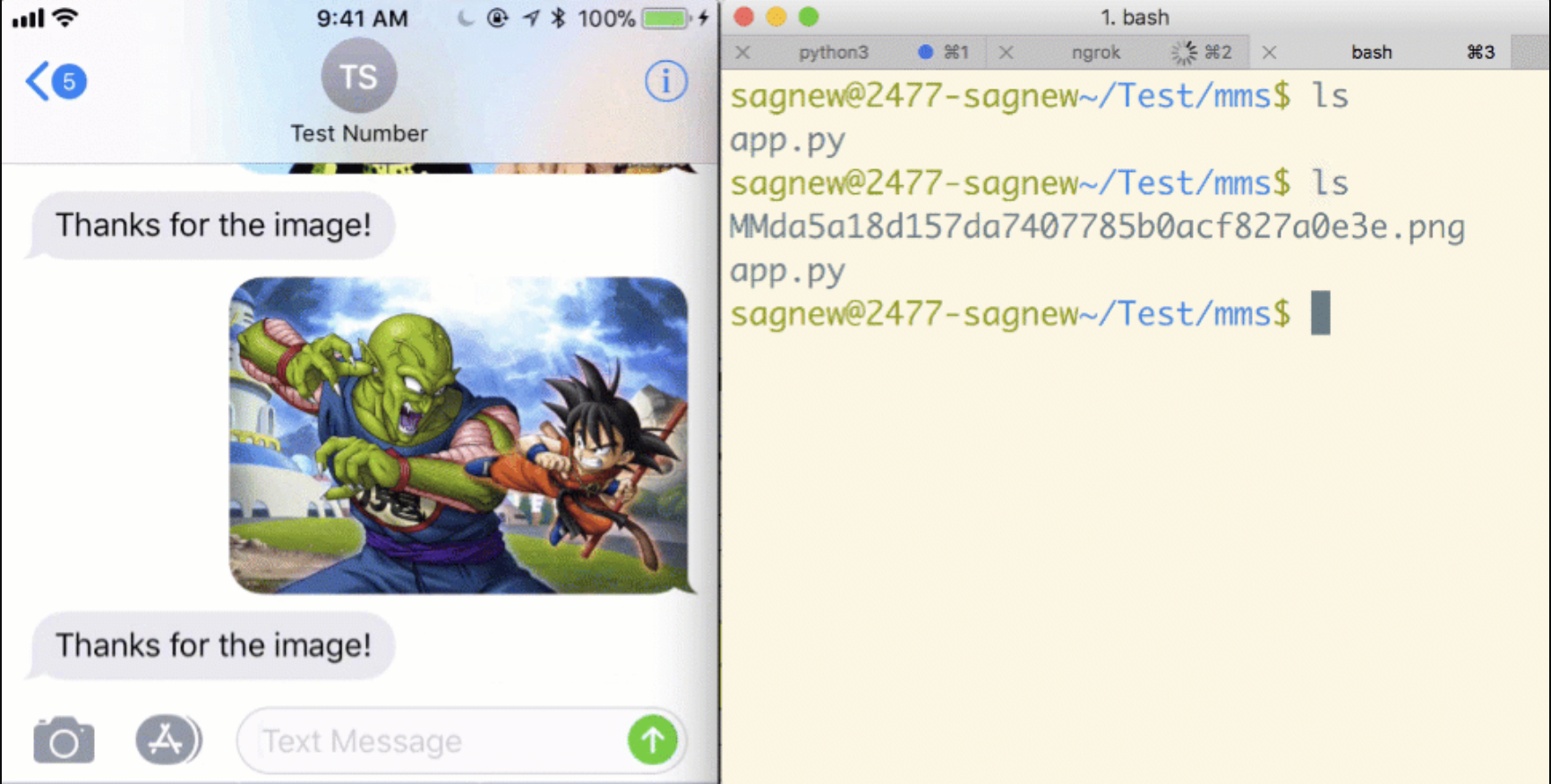 How to receive and download picture messages in Python with