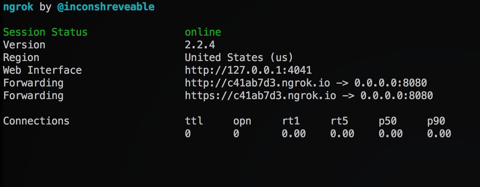 ngrok terminal output