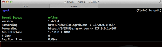 Test Your Webhooks Locally with ngrok - Twilio