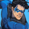 nightwingingit