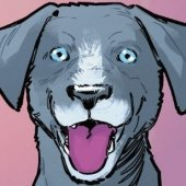 Haley the Dog