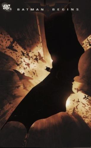 Batman Begins: Special DVD Issue TP