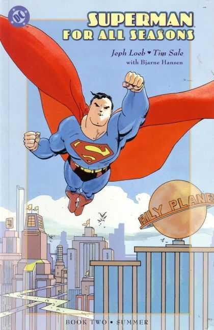 Superman For All Seasons #2